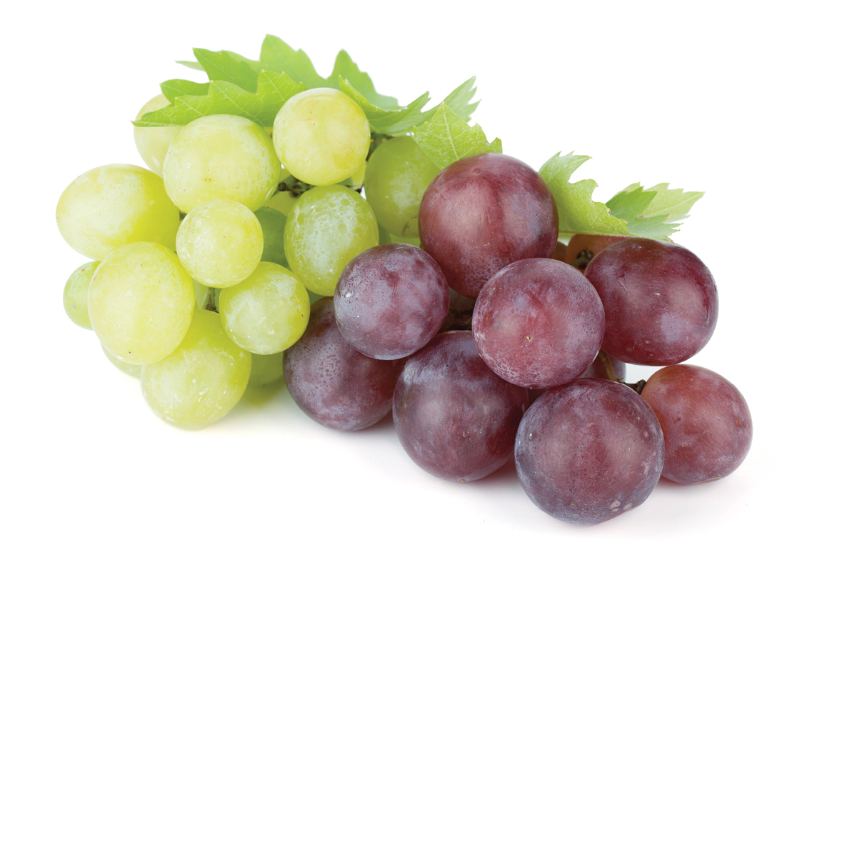 ORGANIC Red and Green Grapes