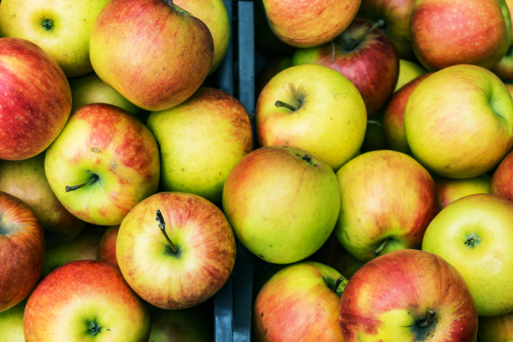 Organic Honeycrisp Apples - $2.49/lb!